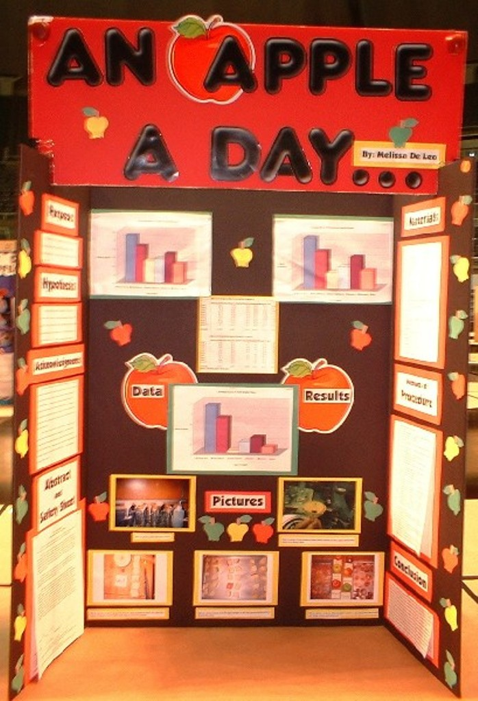 science fair projects display boards science fair projects display ...