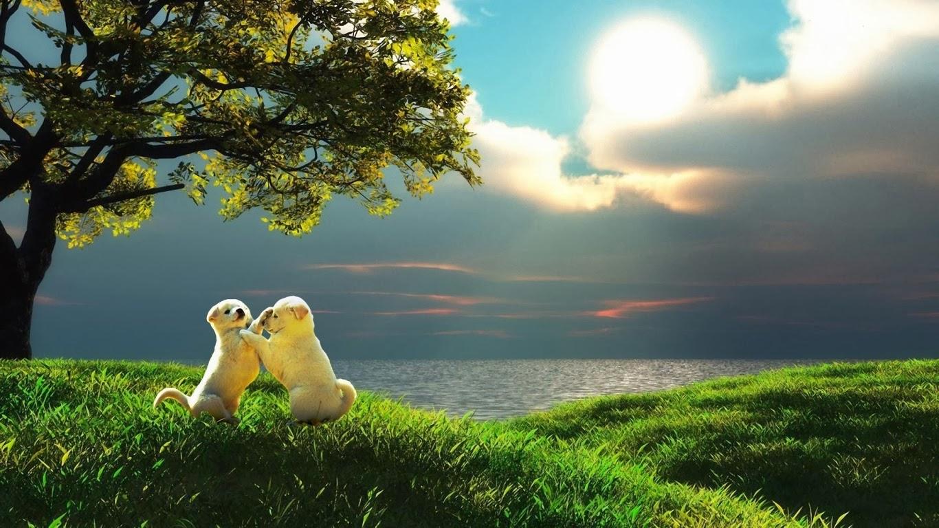 cute puppies in love wallpaper hd free download jpg love - hd
