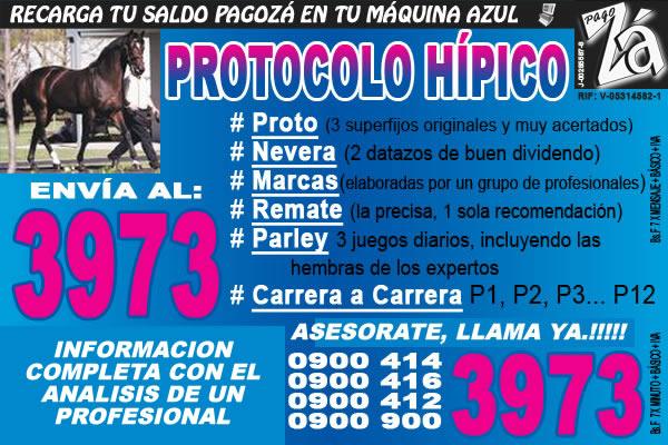 PROTOCOLO HIPICO: HIPISMO EN GENERAL Y DATOS HIPICOS CON EL ANALISIS DE CANDIDO MARCANO.