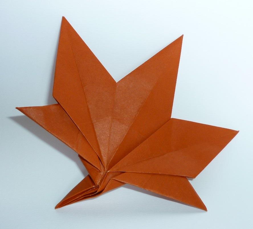 F Ziegler Origami à Nancy Et Autres Billevesées Feuille Dérable