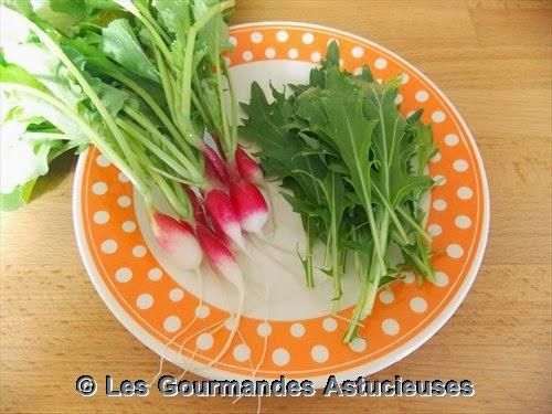 radis et salade du jardin