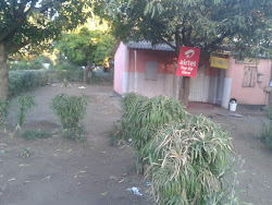 House for Sale in Linda, Livingstone