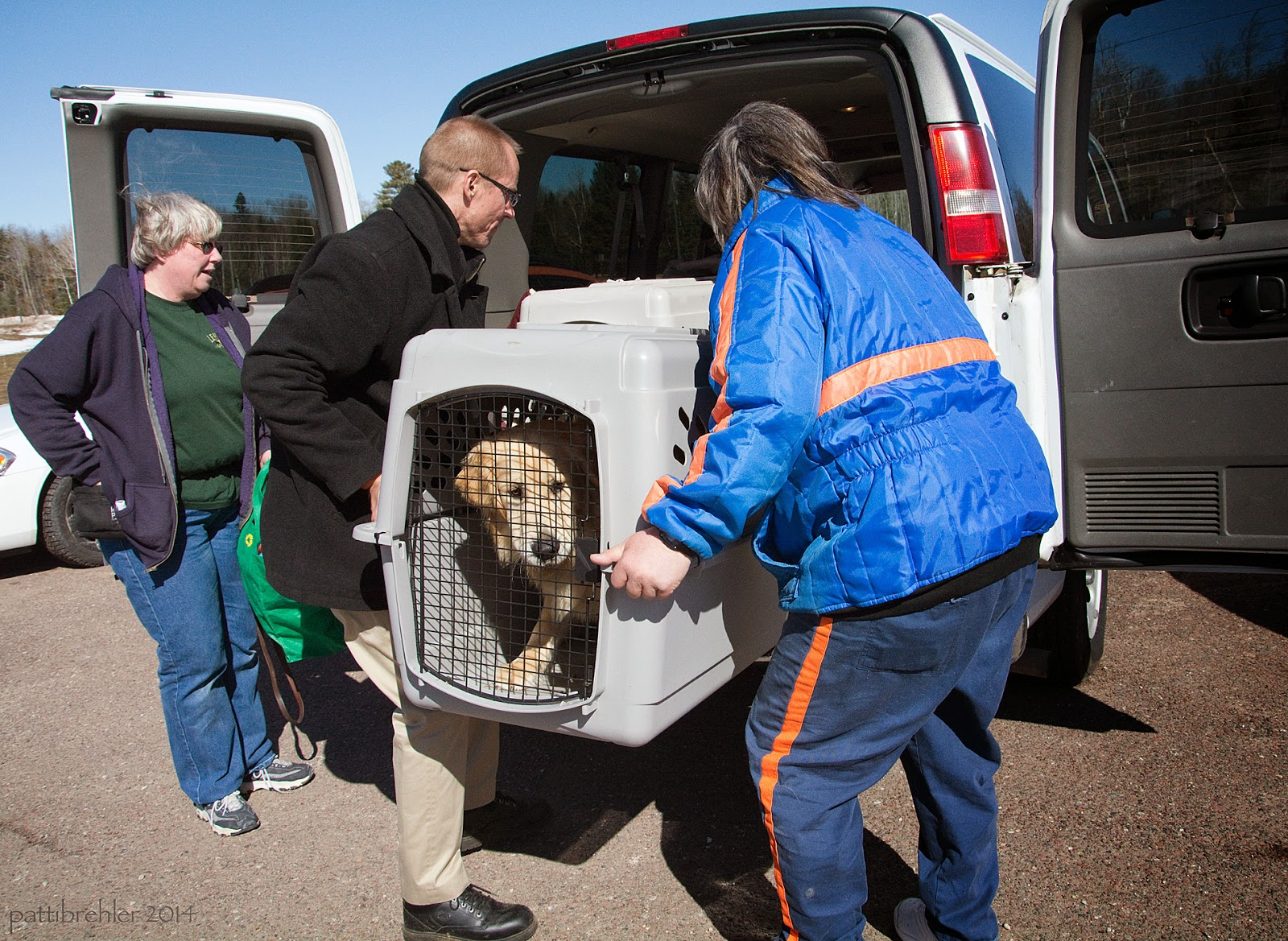 A golden retriever is looking out from inside of a plastic airline dog crate as it is being lifted into the back of a white van by twon men. The man on the left is wearing glasses and a black pea coat and kahki pants. The man on the right is wearing a prison blue jacket and pants with orange stripes. A woman dressed in a blue hoodie, green t-shirt and blue jeans is standing to the left of the two men, holding the left van door open. It is a sunny day.