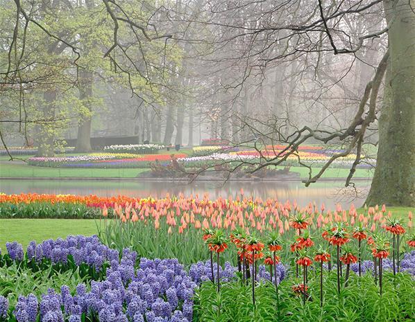 مهرجان الربيع, مهرجان Keukenhof Flower Parade ,صور ورد, صور أزهار,