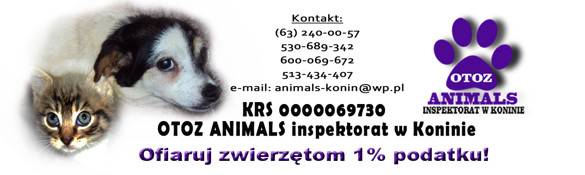 ANIMALS KONIN