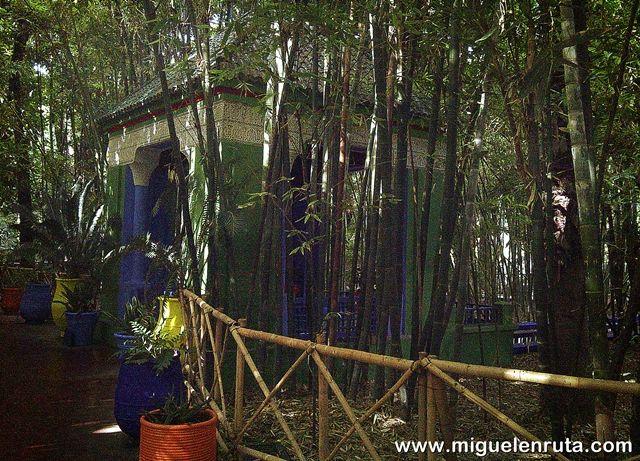 Jardines-Majorelle-Bambú