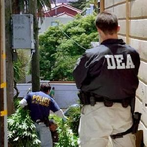 The Drug Enforcement Agency