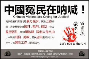 上海控訴人:張翠平,田寶成