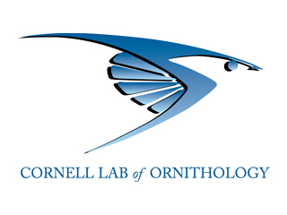 Birds Cornell Lab Of Ornithology 2015 Home Design Ideas