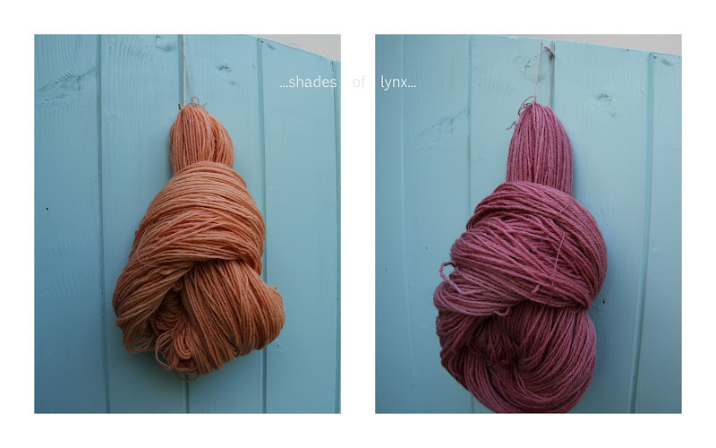 Poll Dorset yarn, dyed with madder title=