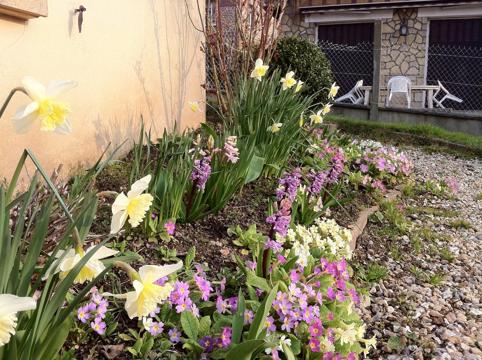 Mon jardin imparfait mars 2013 for Le jardin imparfait