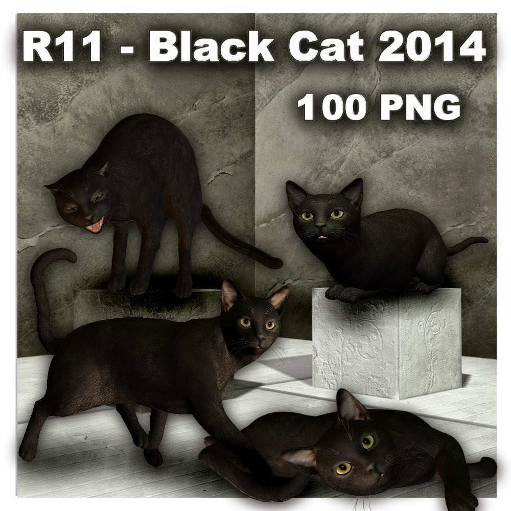 http://1.bp.blogspot.com/-XEWB5vh5V8E/U7FSY96q8HI/AAAAAAAADcM/QnkQP6PyTY8/s1600/R11+-+Black+Cat+2014.jpg