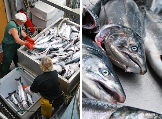 Lieferung von frischem Fisch