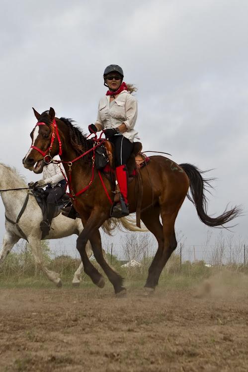 Donna and Endurance Horse Amigo