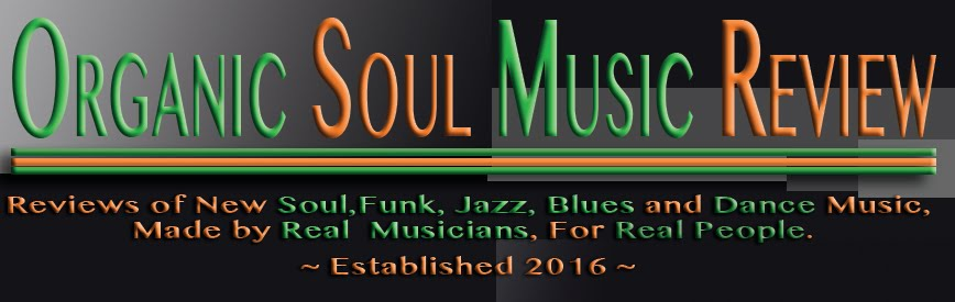 Organic Soul Music Review