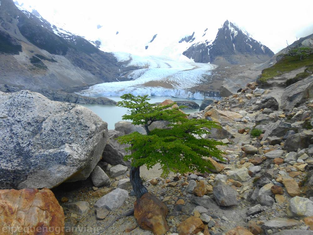 Glaciar Grande, El Chalten
