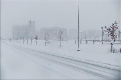 Gasteiz bajo el blanco manto de la nieve