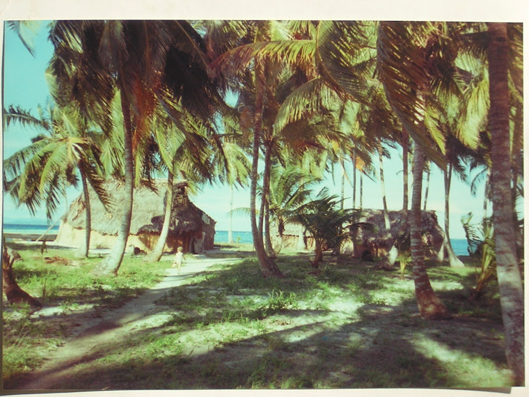 Rheannon walking on an Island