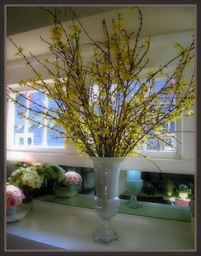 Estelle&#39;s Forsythia