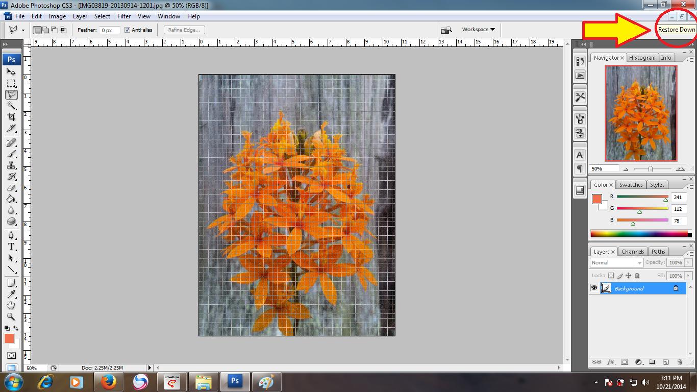 Cara menerangkan foto dengan photoshop cs2 5