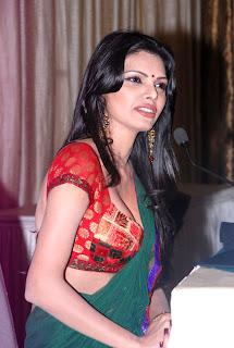 Sherlyn Chopra's Sizzling Photo Shoot in Saree press meet