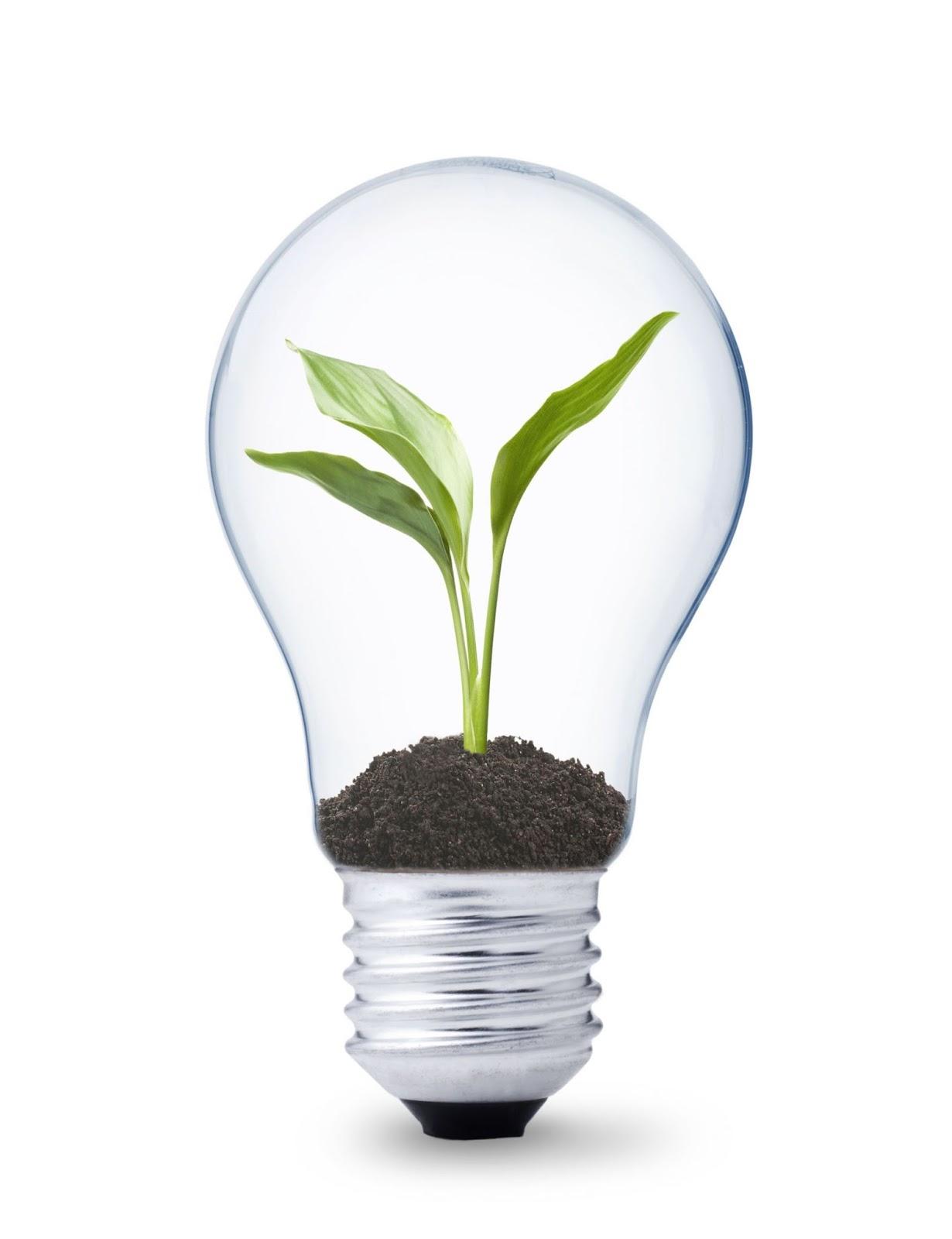 Better Lighting Killer Tips On Saving Energy Bills For Your Office