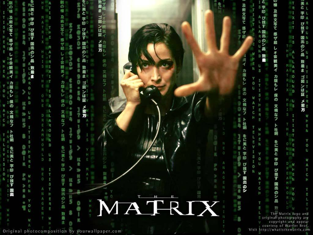 http://1.bp.blogspot.com/-XFeRfOIGqBg/TyrrD6ZtXEI/AAAAAAAAAdg/nFkLjXV70co/s1600/Trinity-from-The-Matrix-the-matrix-2282236-1024-768.jpg