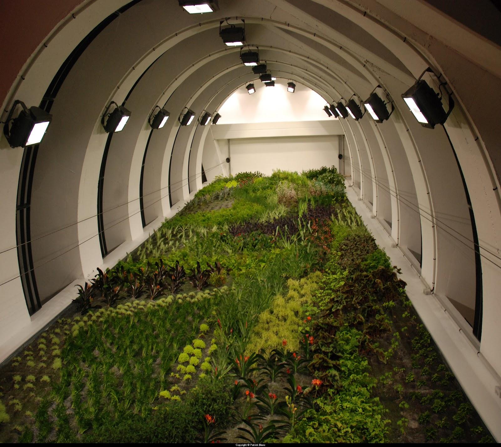Bensozia patrick blanc 39 s vertical gardens for Garage blanc lyon 4