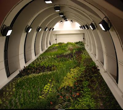 Bensozia patrick blanc 39 s vertical gardens for Garage lyon 2