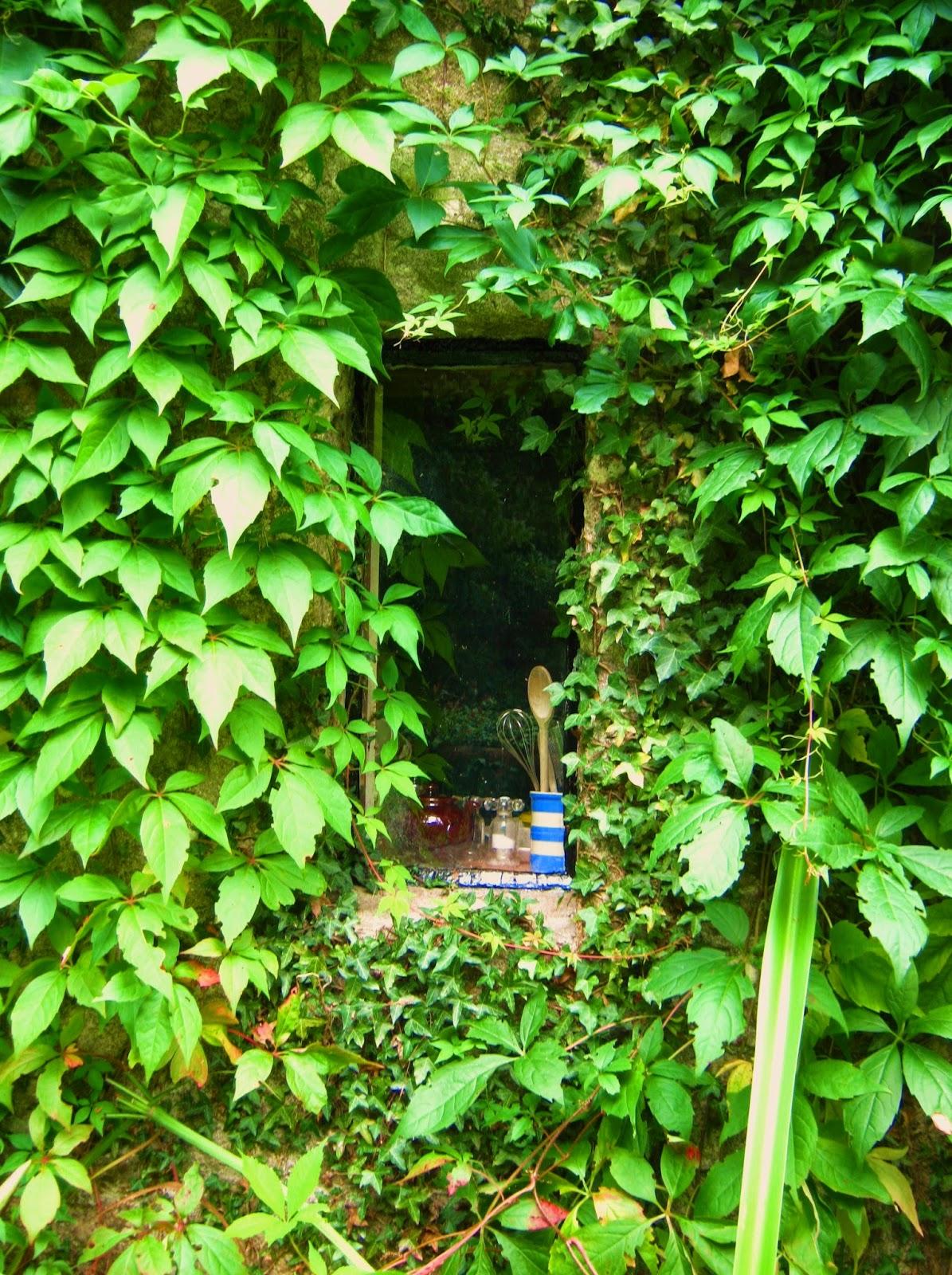 cutand-dry.blogspot.com cottage window