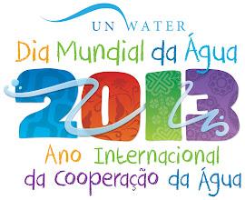 2013: Ano Internacional da Cooperação da Água