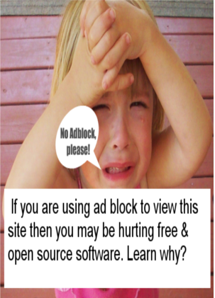 Thanks For Not using Ad-block