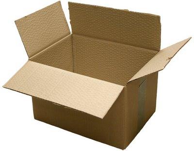 Bayi perempuan dalam kotak sampah