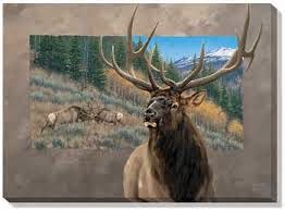 Elk Rock
