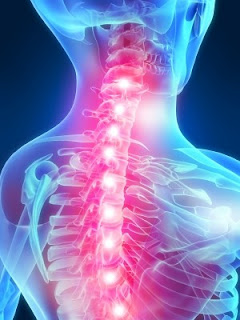 spine pain7289 لماذا يعد الجلوس لفترات طويلة خطرا على جسم الانسان