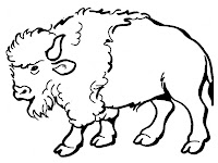 Realistic bison coloring pages