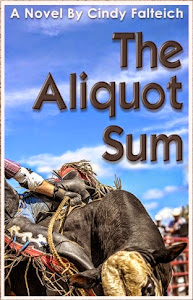 The Aliquot Sum - a novel