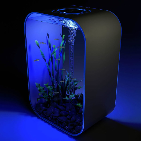 20 creative and unusual fish tank aquariums spicytec for Cycling a fish tank