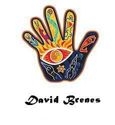 DAVID BRENES