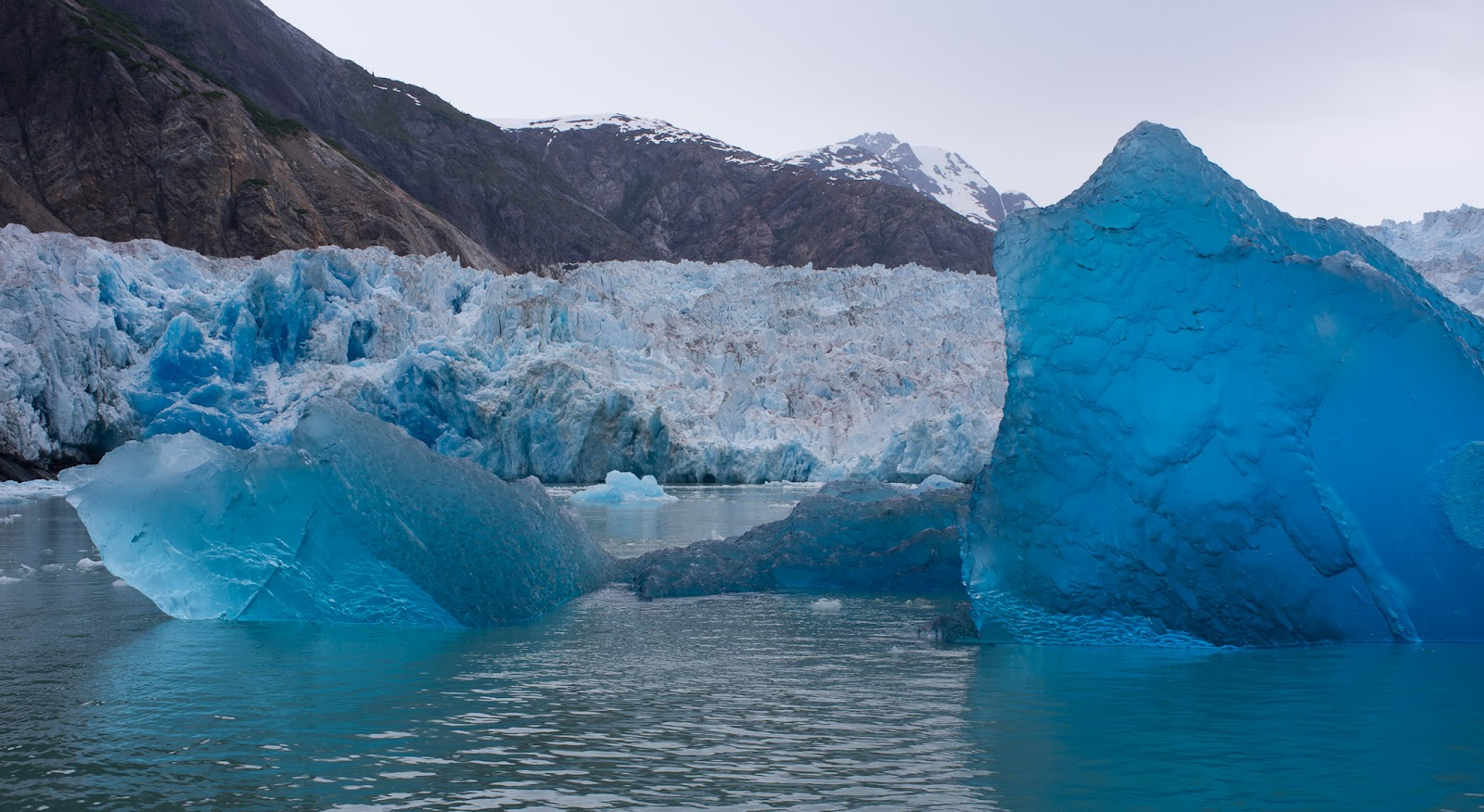 Jeremy Bears Tracy Arm Fjord South East Alaska - Tracy arm fjord