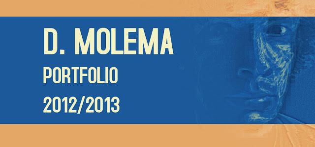 D. Molema Portfolio 2012/2013