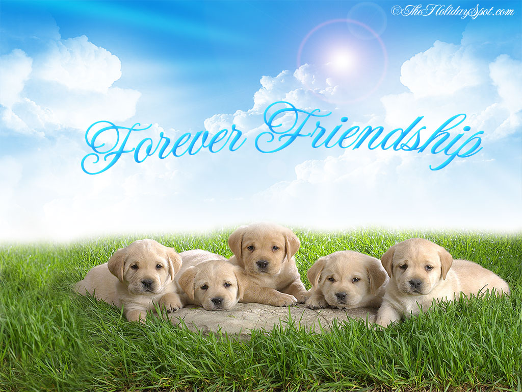 http://1.bp.blogspot.com/-XJ6TSRBBDSk/UBqsWf8DD3I/AAAAAAAAGq4/tmFeUVgETW4/s1600/Friendship-Day-photo-2.jpg