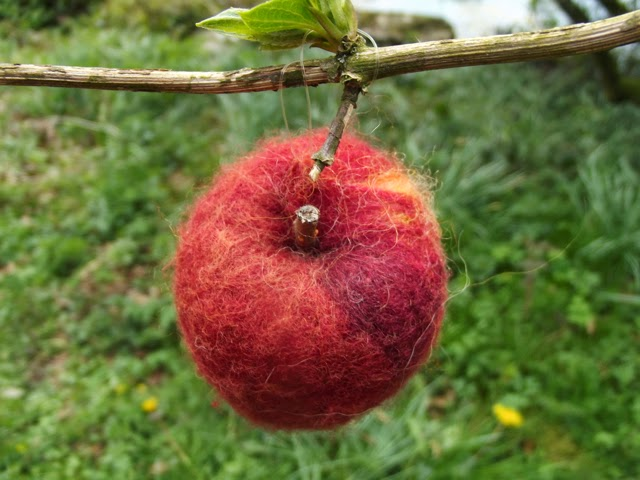 Woollen Woods apple