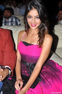Parvathi melton at Srimannarayana Triple platinum pics (7)