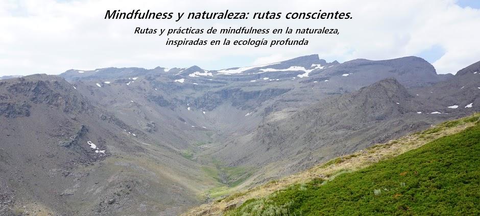 MINDFULNESS Y NATURALEZA: RUTAS CONSCIENTES