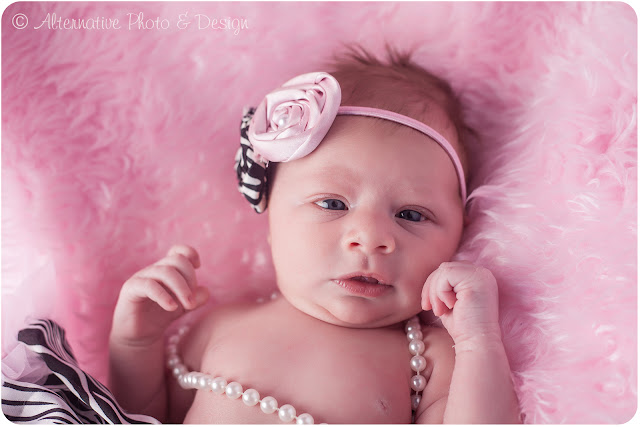Miss {A} Newborn Session | Newborn Photographer Janesville, WI