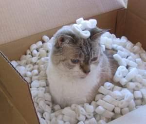 recycling styrofoam -  image form keetsa.com