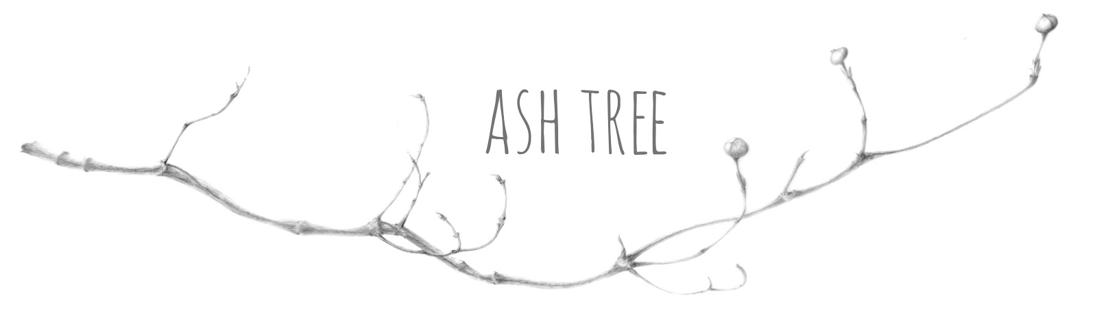 ash tree: vintage & lifestyle blog