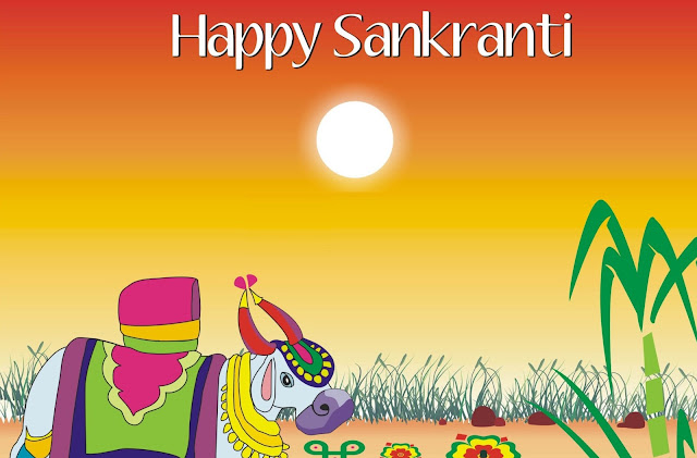 happy-sankranti-cow-images-hd