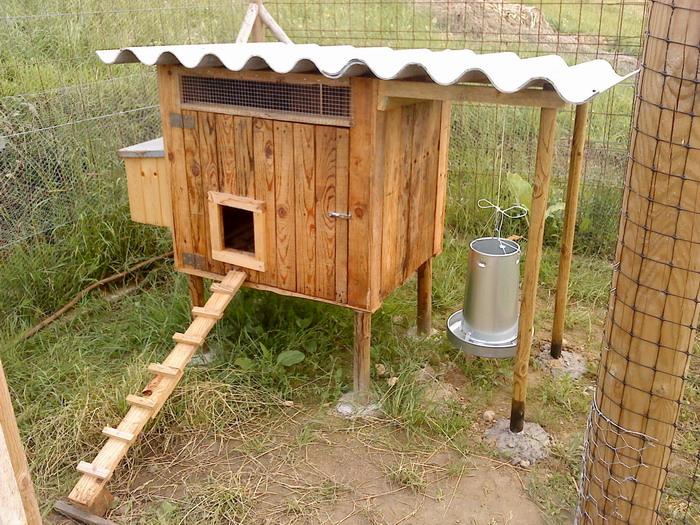 Pero mira lo que hay aqu gallineros de madera iii for Construir piscina natural paso a paso
